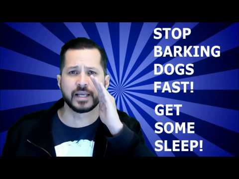 How To Stop Barking Dogs! - 2017 In Your Neighborhood- Anti Barking Dog CD