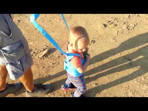 Baby Walk Assisstant + Baby Toddler Walking Assistant * Baby Harness Walker Safety Review! [+]
