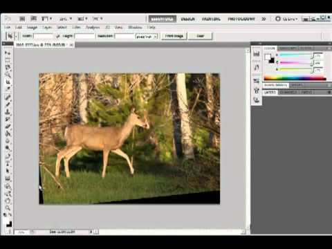 Image Rotation, Cropping, Canvas Tutorial  in Photoshop CS5