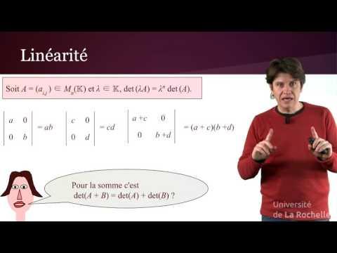 Déterminant 3/4 : Pour une matrice