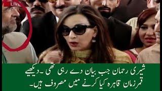 Qamar zaman Qaira Movements During Sherry Rehman Media Talk