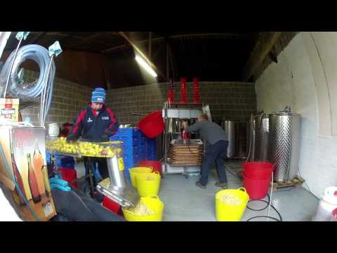 2016 cider day 4 for the yorkshire cider company