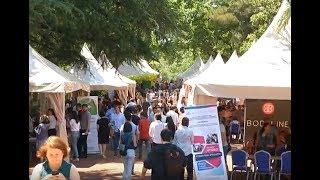 ახალგაზრდების დასაქმების ფესტივალი Job Fest