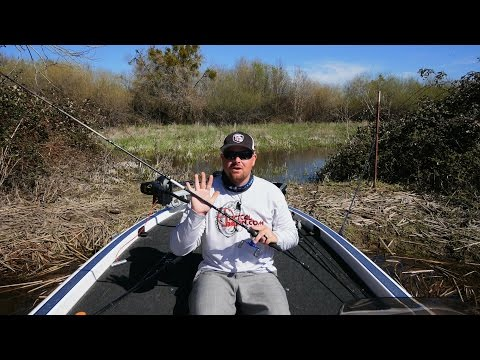 Fishing Rod Buyer's Guide: How To Choose The Right Rod