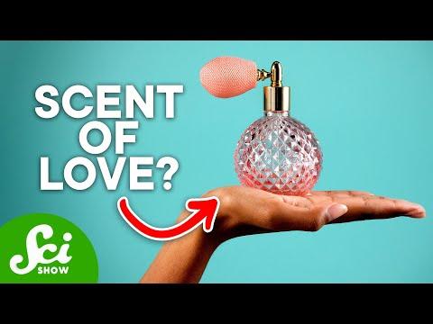Do Humans Have Pheromones?