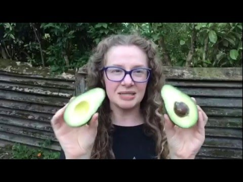 Why I Don't Eat Avocado Seeds!