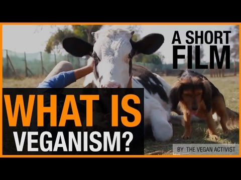 What Is Veganism? (+ Why You Should Be Vegan)