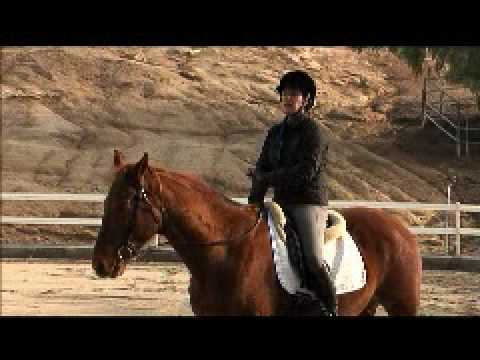Horse Master with Julie Goodnight - 106 Head Down Cue - Teaching Segment
