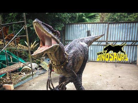 HDC-10 Realistic Velociraptor Dinosaur Costume Hide Legs