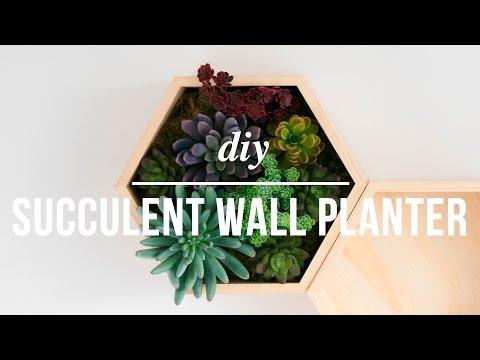 DIY Faux Succulent Wall Planter