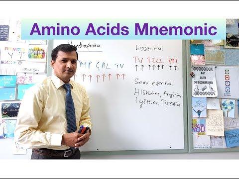 Amino Acids Mneumonic