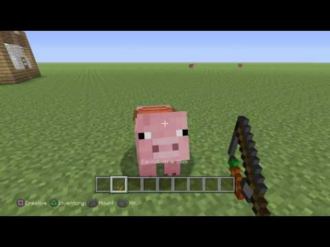 How to ride pigs in minecraft (PS4,PS3,XBOX1,XBOX 360)