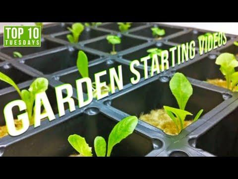 Top 10 Best Garden Starting Videos | Top 10 Tuesdays