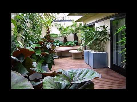 Best Balcony gardening ideas