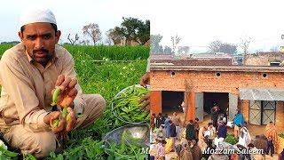 گاؤں کی سبزی منڈی Green Pea or matar harvest in Pakistan Village ki Sabzi Mandi Vlog