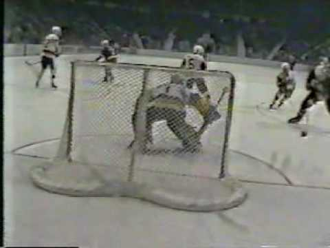 1984 NCAA Hockey Championship BGSU vs. Duluth - Final Goal