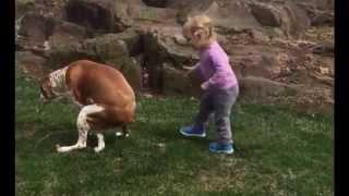 Download Kaka yapan köpeği cesaretlendiren kız Video