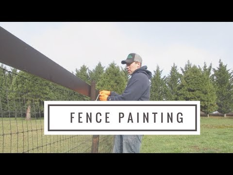 Painting the No Climb Horse Fence II Escape Chicken! II Vlog