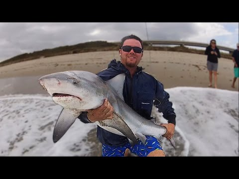 Shark Fishing With Spinning Reels!