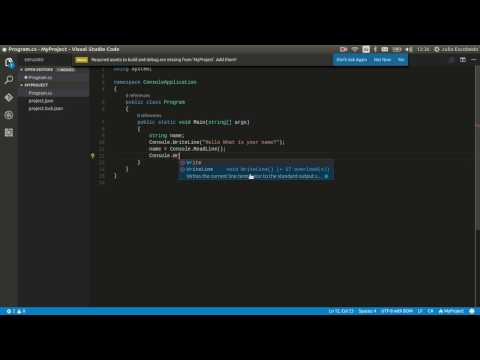 Create, compile and Run a Project on Visual Studio Code for Linux