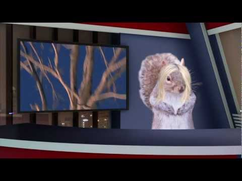 Vanderbilt Squirrelcast