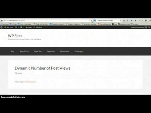 Add Post Views Count in WordPress