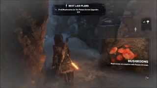 Rise Of The Tomb Raider Craft Poison Arrows