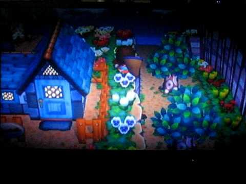 Animal Crossing: City Folk- Tarantula got Pwned (n00b way)