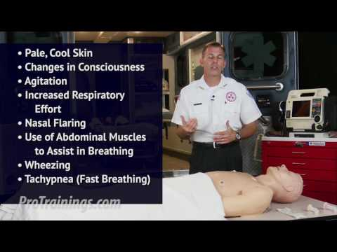 What is Respiratory Arrest?