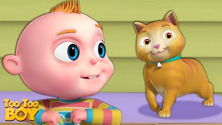 TooToo Cat Episode   TooToo Boy   Funny Cartoon Animation For Children   Videogyan Kids Shows