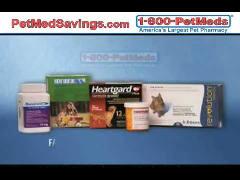 Pet Medication Online: Affordable and Quick - PetMedSavings