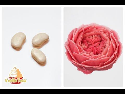 REZEPT / koreanische Bohnenpaste für Blumenspritzen / VEGAN