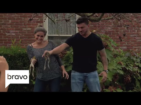 Jax & Brittany Take Kentucky: Jax Gets Up Close and Personal With Some Frogs (Episode 2) | Bravo