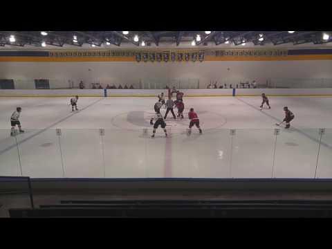 AHA C1 LDN vs Lions 3.4.17 (2nd Period)