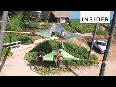 Tentsile Tents are basically giant hammocks