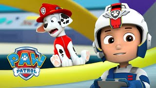 Mini Marshall and the Marooned Mayors! 🐶 PAW Patrol Cartoon Compilation 63 PAW Patrol & Friends
