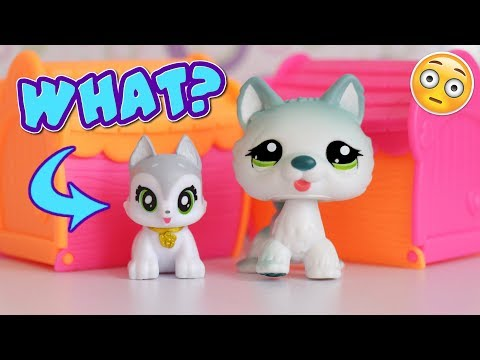Are These Wannabe LPS? || Best Furry Friends Opening