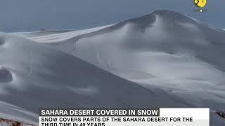 Sahara desert covered in snow