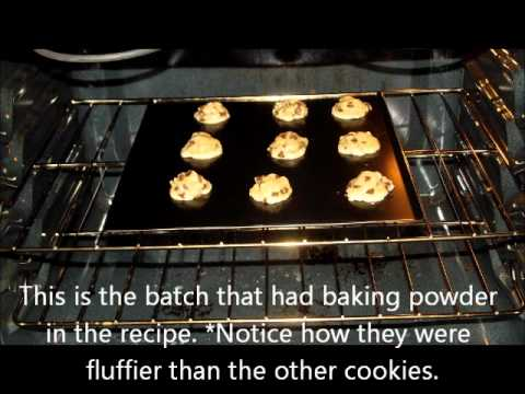 Why Do Cookies Rise