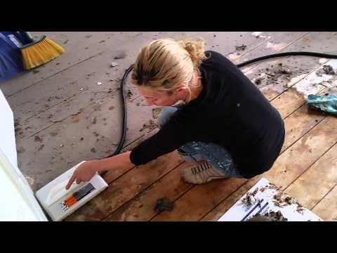 Removing tar paper from floor
