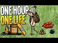 MASSIVE NEW COOKING & FARMING UPDATE! Making Stew for the Whole Village - One Hour One Life Gameplay