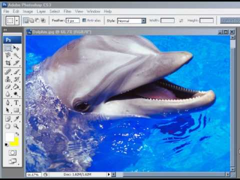 How to Check Image Size & Resolution