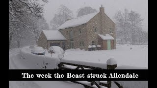 The Beast From The East - Allendale Documentary - 2018