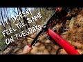 IT'S BETTER ON A WEDNESDAY | Mountain Biking Buffalo Creek Park in Lake Lure, NC