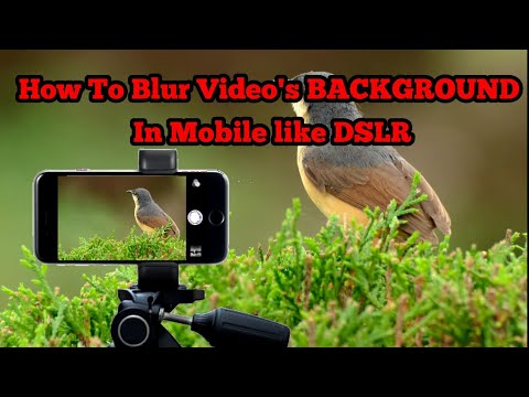 How To Take Blur Background Videos In mobile || DSLR Like Videos In Any Mobile // hindi