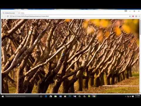 how to create a photo slideshow using javascript html and css