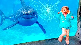 Funniest Moments Baby Meet Animals - Life Funny Pets Video