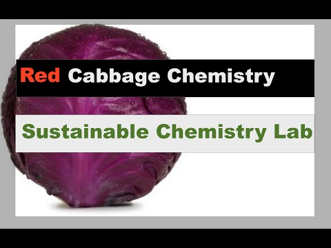 Red Cabbage Chemistry!