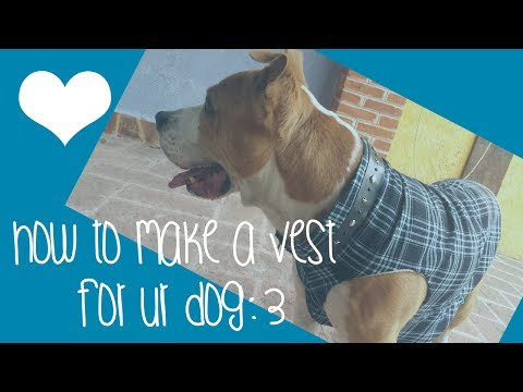 ♥How to make a sweater /  vest for ur dog♥