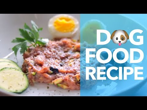 How To Make Dog Food Recipe